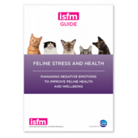 Photo of Feline Stress & Health